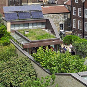 Green roof design
