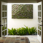 Vertical gardens add natural interest