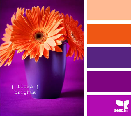 Home dzine nature 39 s colours for a home - Violet and orange combination ...