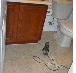 Home Dzine Bathrooms How To Paint A Vinyl Floor