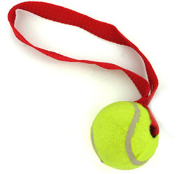 tennis ball for dogs toy