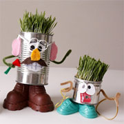 Wheat grass project for kids