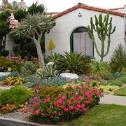 Xeriscapes - the new design standard