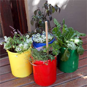 Recycle plastic paint pots or containers
