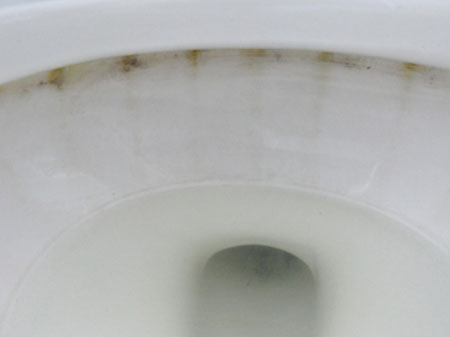 remove toilet stains