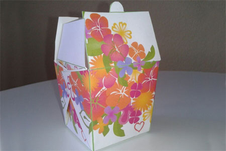 Free gift box and party favour boxes