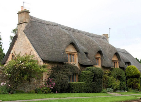 thatch roof cottage rustic - Thatched Rood