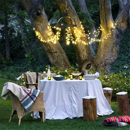 fairy string lights garden tree party