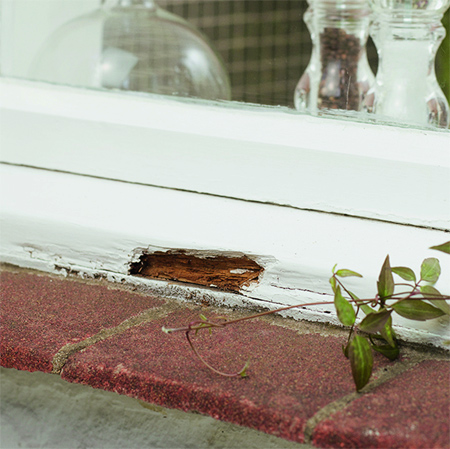 bunning how to fix rotten window frame