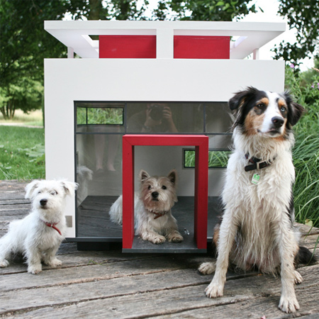 deluxe designer dream dog house cat home