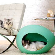 Designer pet homes