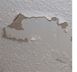 HOME DZINE Bathrooms How To Get Rid Of Mould And Stains On A Ceiling - Bathroom ceiling mold prevention