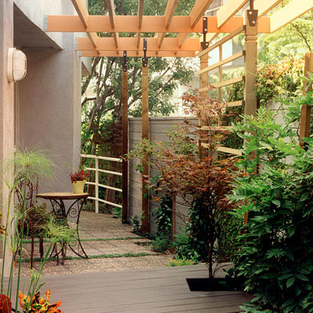 privacy in your garden