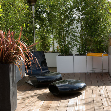 Home Dzine Garden Establish Some Privacy In Your Garden