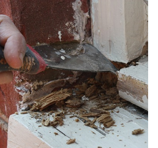 Home Dzine Home Diy How To Repair Damaged Wood And Treat