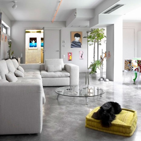 polished concrete floor in garage turned into living space