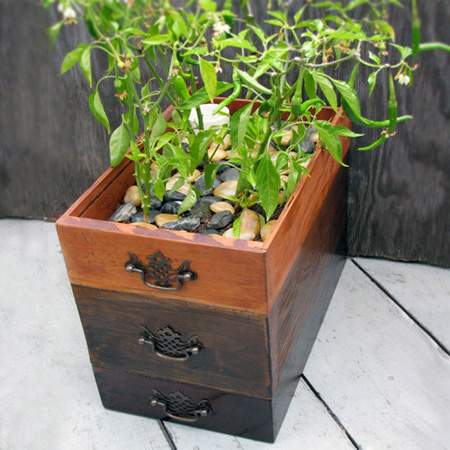 Repurpose an old drawer into plant container