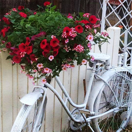 old vintage bicycle garden container plant holder