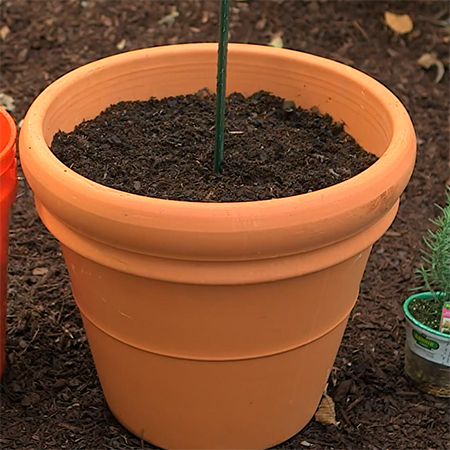 Home dzine garden make a herb tower with plant pots for Clay potting soil