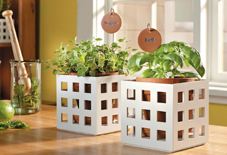 Decorative lattice frames for potted plants