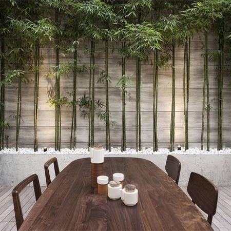 Disguise Or Cover Vibracrete Precast Concrete Walls