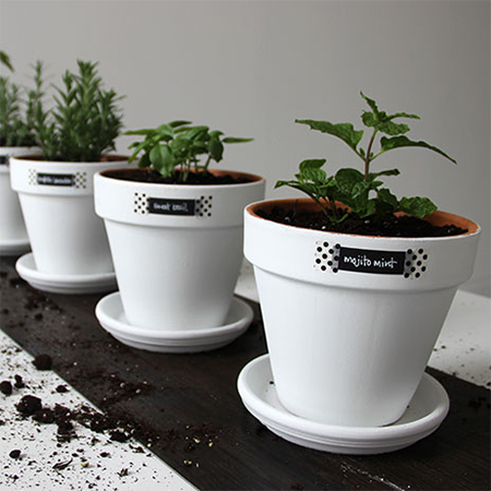 painted pots with rust-oleum for indoor herb garden