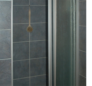 Can I paint the tiles in my shower?