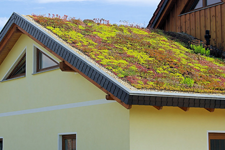 Home Dzine Green Living How To Build Your Own Green Roof