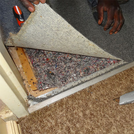 rip out remove carpet and underfelt when laying new floor tile
