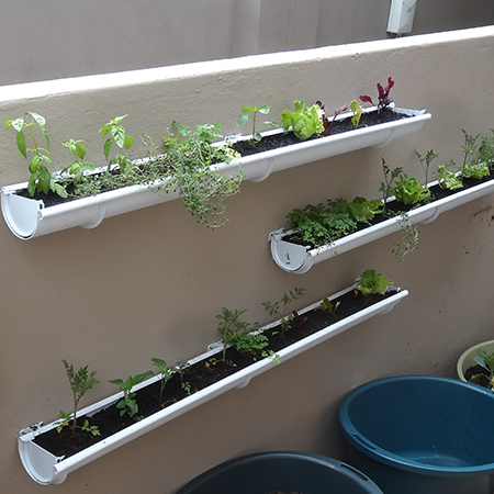 make build wall mounted vegetable or herb gutter garden