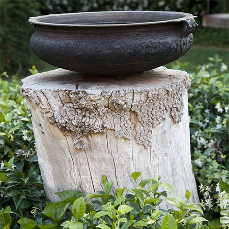 What to do with a tree stump bird water feature