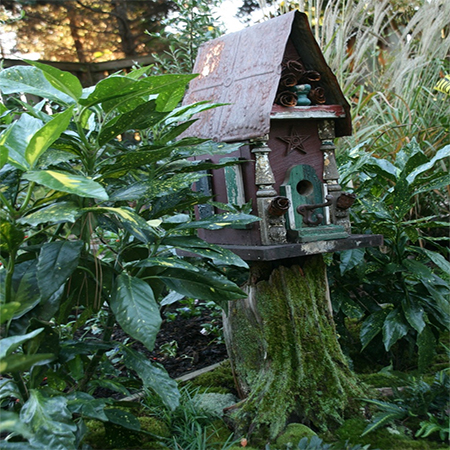 What to do with a tree stump bird house