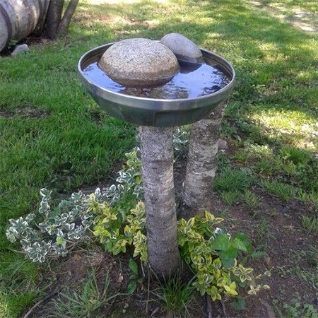 What to do with a tree stump birds waterbath