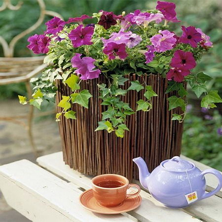 Dress up plain pots with branches or twigs