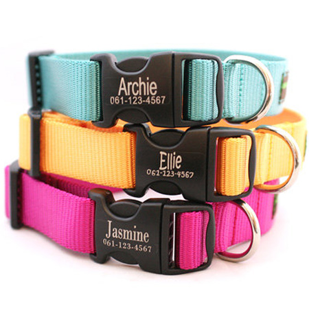 Gift idea... How to make a personalised dog collar