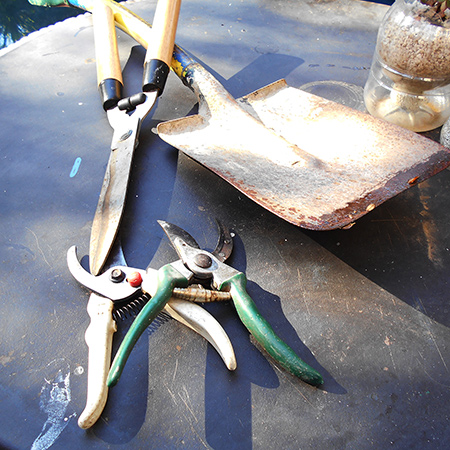 clean restore and sharpen garden tools