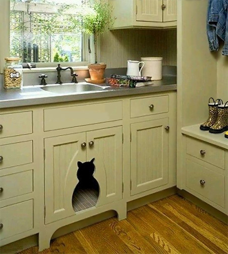 How to disguise or hide a litter box so that it is out of sight