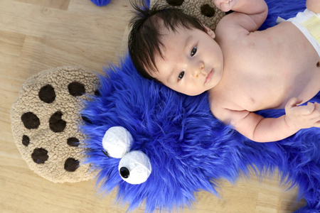 Use super-soft plush fabric to make  cookie monster rug