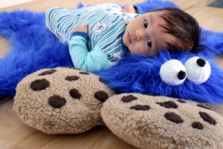 cookie monster rug and cookie pillows