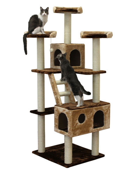 Here are more ideas for cat play stands: