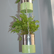 Aluminium can plant holder