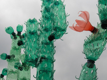 colourful cacti made from recycled pet plastic bottles
