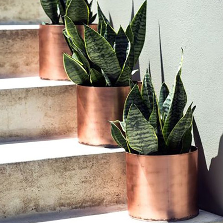 Tins cans are re-purposed into metallic containers with a coat or two of copper spray paint