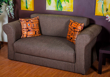 comfortable upholstered sleeper couch