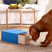 Find the treat! Intelligent toy for smart dogs