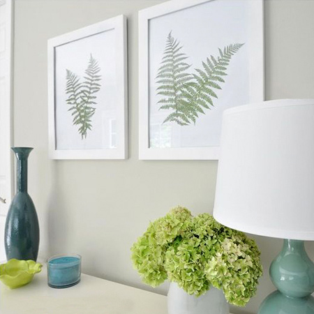 Ferns are a popular houseplant, with their fresh green fronds and delicate, lacy stems. With this project you can bring ferns indoors to create a lovely feature for a wall, and it's so easy!