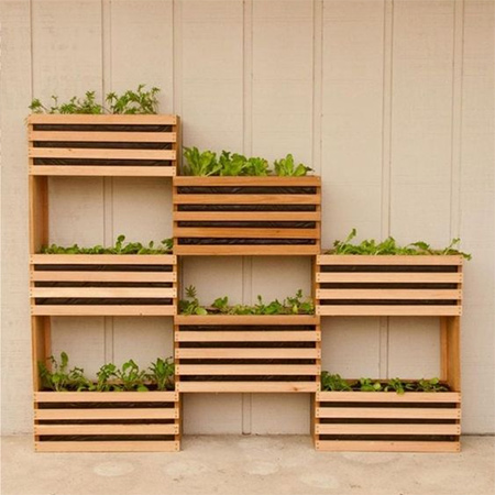 Using affordable materials found at your local Builders Warehouse you can make your own modern vertical garden for kitchen herbs and small salad veggies.