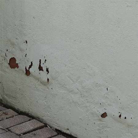 Home Dzine Home Diy How To Treat Rising Damp In Exterior And Interior Walls