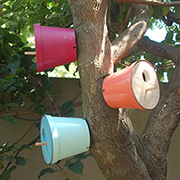 Colourful plant pot bird houses