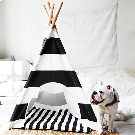 If you have a dog, you'll want to keep your beloved pet happy. A comfortable pet bed is a must-have, and if you can have a comfortable pet bed that also harmonises with your home decor - even better. Pipolli manufacture a range of teepee beds, which you can order online and have shipped to SA. Or you can gather together a few basic materials and make your own.